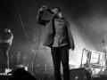 ENTER-SHIKARI-live-in-Hamburg-13022015-16