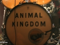 animal-kingdom-27102012-koeln-live-music-hall-live-07